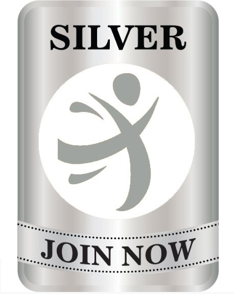 Offre Silver